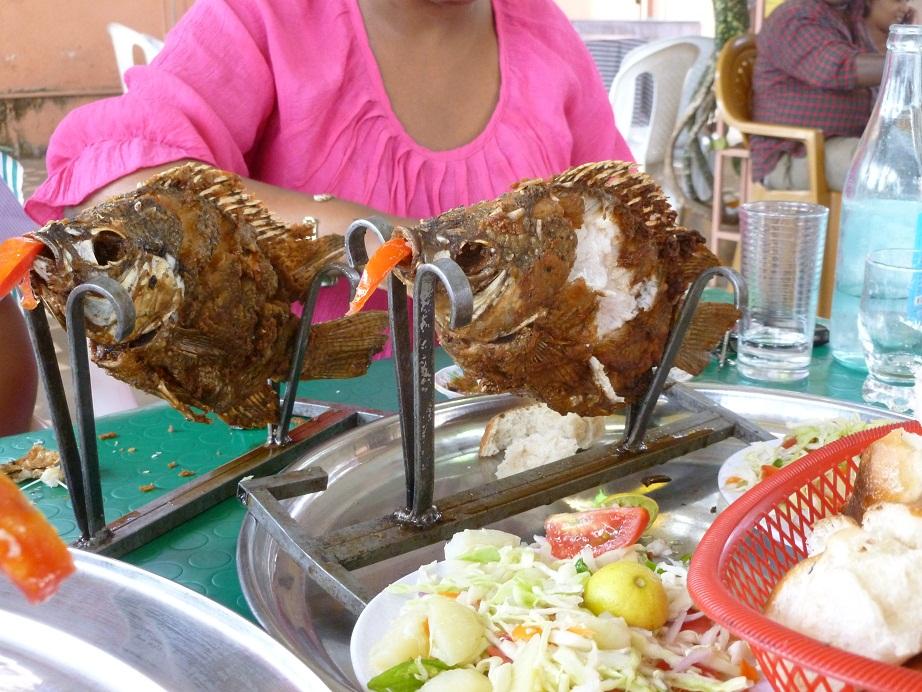 fish dinner copy